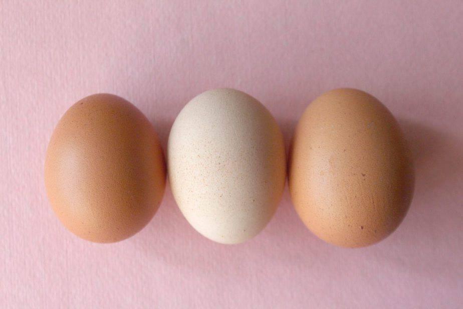 Eggland'sBest Eggs
