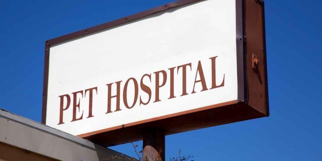 Banfield Pet Hospital Prices